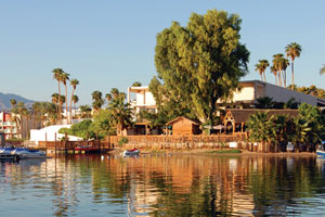 pet friendly hotel lake havasu
