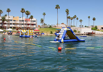 petfriendly hotel in havasu