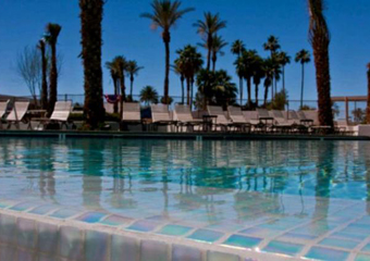 petfriendly resort in havasu